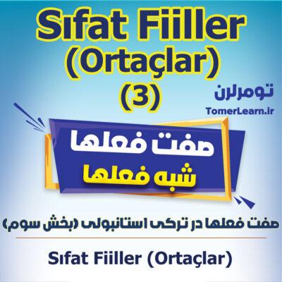 صفت فعلهای لغوی در ترکی استانبولی - Sözlüksel Ortaçlar