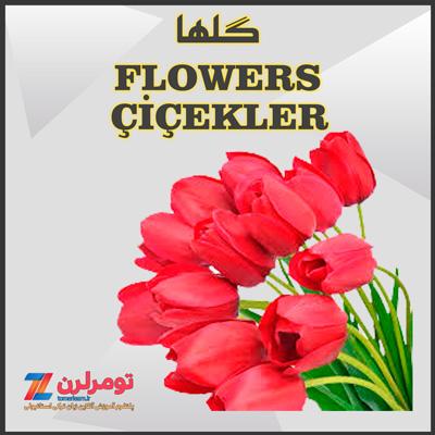 اسامی گلها در ترکی استانبولی و انگلیسی