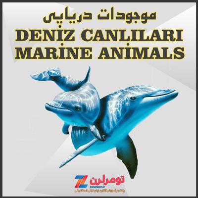 اسامی جانداران دریایی در ترکی استانبولی و انگلیسی
