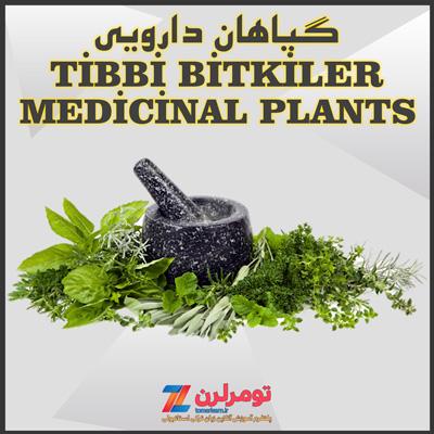اسامی گیاهان دارویی در ترکی استانبولی و انگلیسی