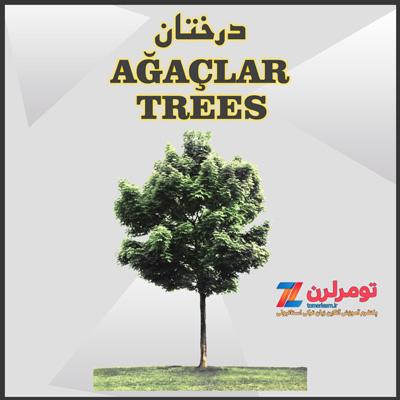 اسامی درختان در ترکی استانبولی و انگلیسی