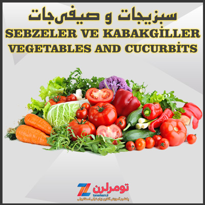 اسامی سبزیجات و صیفیجات در ترکی استانبولی و انگلیسی
